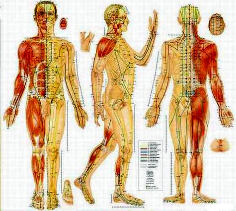 New Star Chiropractic Acupuncture Amp Wellness Center